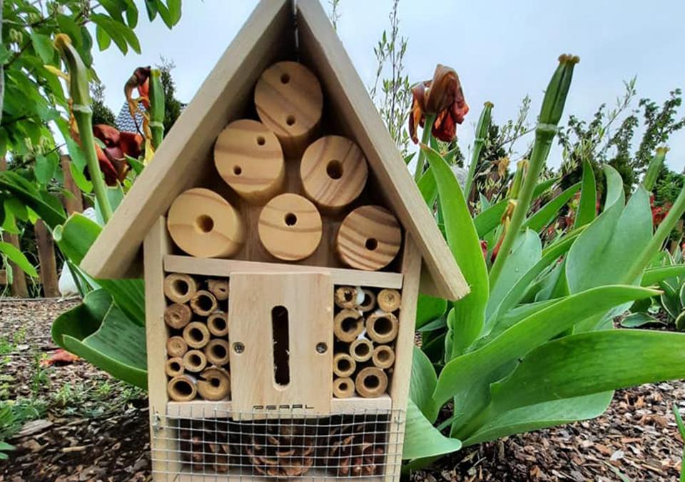 Wir bauen ein Hotel… für Insekten